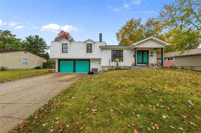 10 Spencer Valley, Saint Peters, MO 63376 (#20077690) :: Parson Realty Group