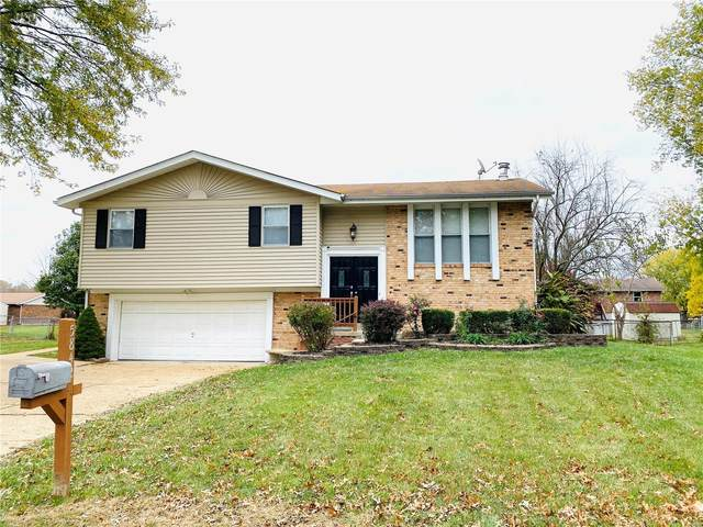 5842 Barberry Drive, Imperial, MO 63052 (#20077978) :: Clarity Street Realty