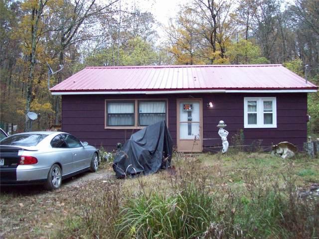 459 Wayne 453B, Piedmont, MO 63957 (#20079703) :: Parson Realty Group