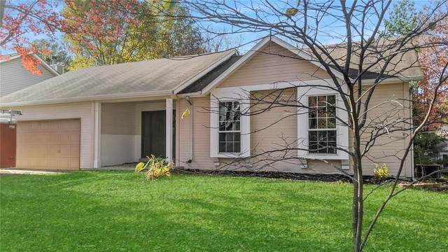 215 Brittany Drive, Fairview Heights, IL 62208 (#20080088) :: Parson Realty Group