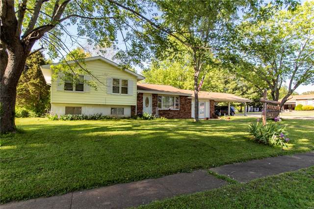801 Sherwood Drive, Bismarck, MO 63624 (#20081964) :: The Becky O'Neill Power Home Selling Team