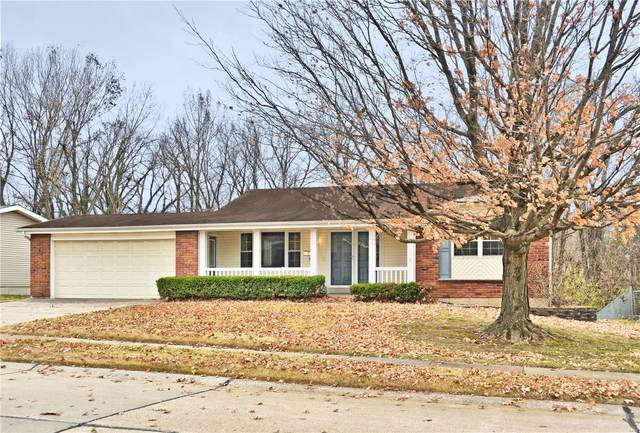 14520 Avocado Lane, Unincorporated, MO 63034 (#20082540) :: Clarity Street Realty