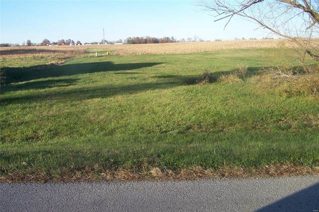 1319 Carribean Drive, Edwardsville, IL 62025 (#20083019) :: Elevate Realty LLC