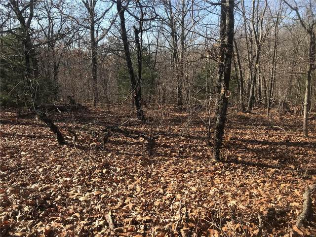 22 + Acres, Richwoods, MO 63071 (#20083513) :: RE/MAX Professional Realty