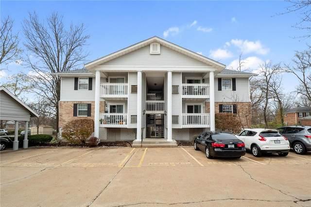 621 S Kirkwood #200, St Louis, MO 63122 (#20083572) :: Century 21 Advantage
