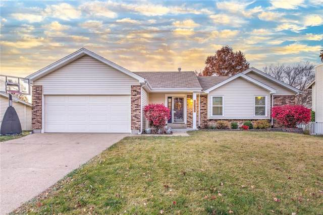 16859 Babler View, Wildwood, MO 63011 (#20083624) :: Parson Realty Group