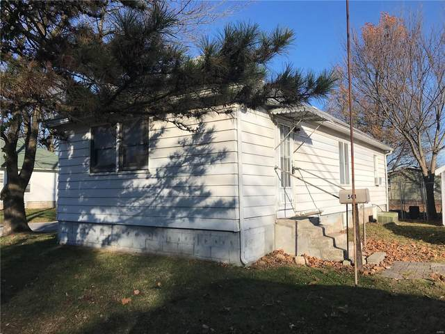 501 E Fairgrounds Avenue, Jerseyville, IL 62052 (#20083861) :: Parson Realty Group