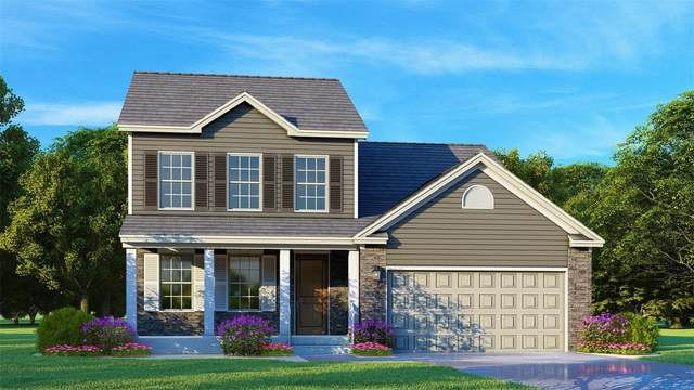 10 Cody (Lot 64) Circle, Festus, MO 63028 (#20084046) :: Parson Realty Group