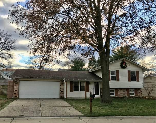 5 Eagle View Court, Saint Peters, MO 63376 (#20084778) :: Clarity Street Realty
