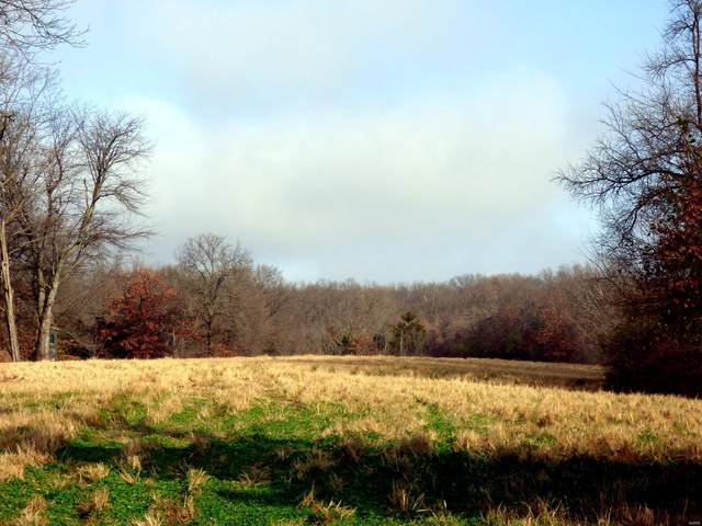 85 Ac   Highway Jj, Elsberry, MO 63343 (#20085525) :: Parson Realty Group