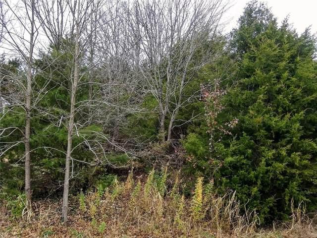 9687 W Vista Drive, Hillsboro, MO 63050 (MLS #20085598) :: Century 21 Prestige