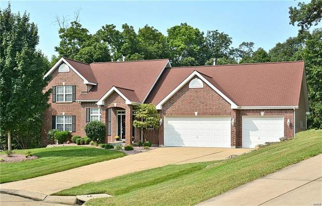 16874 Enderbush Lane, Eureka, MO 63025 (#20085622) :: Matt Smith Real Estate Group