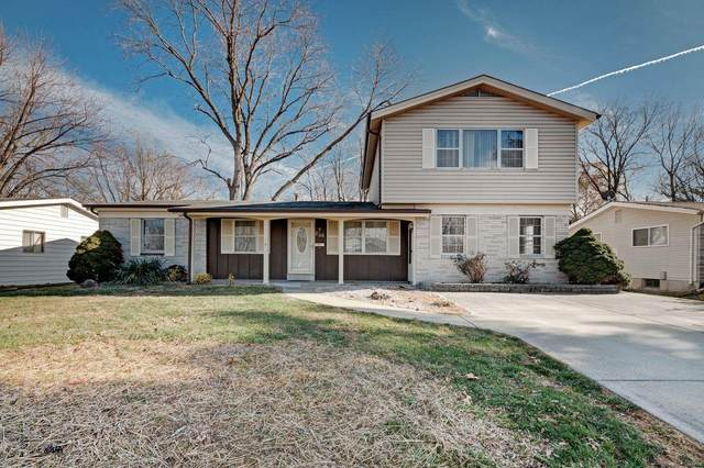 206 Michael Avenue, Wentzville, MO 63385 (#20086124) :: Tarrant & Harman Real Estate and Auction Co.
