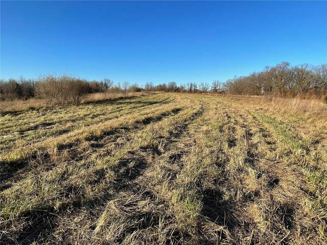 0 Morgan Lane (Tract 4), Eolia, MO 63344 (#20087324) :: Tarrant & Harman Real Estate and Auction Co.