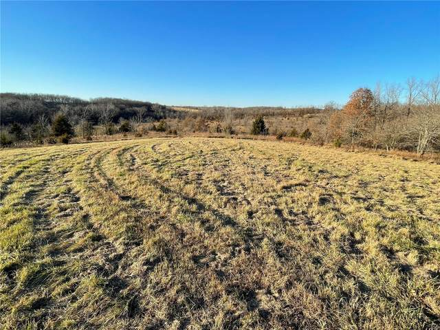 0 Morgan Lane (Tract 5), Eolia, MO 63344 (#20087337) :: Tarrant & Harman Real Estate and Auction Co.