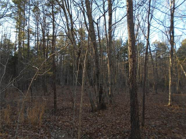 0 Forest Service 2113, Arcadia, MO 63621 (#20089796) :: Parson Realty Group