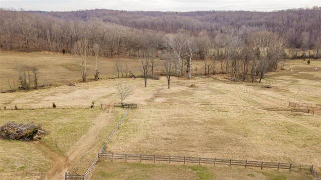 7872 Hwy O, Williamsville, MO 63967 (#20090636) :: Parson Realty Group