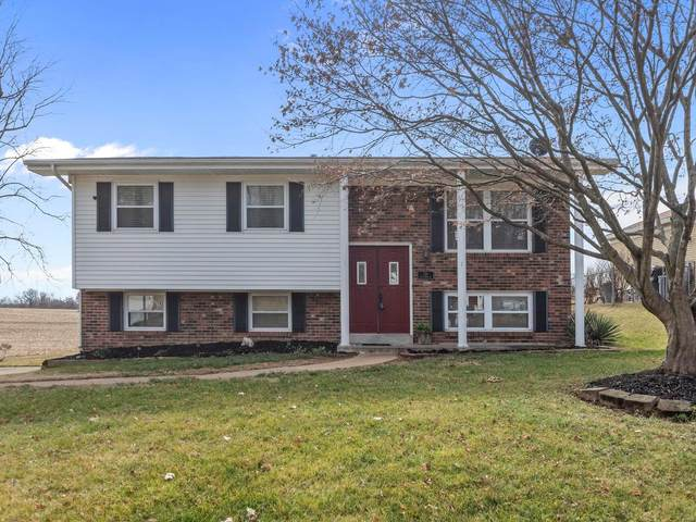 128 Lake Forest Dr, Belleville, IL 62220 (#21000301) :: Realty Executives, Fort Leonard Wood LLC