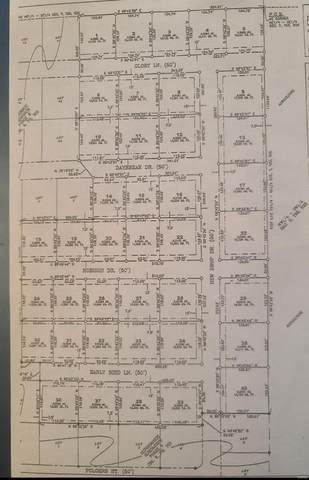 0 Dew Drop Lane #16, MARION, IL 62959 (#21001674) :: Parson Realty Group