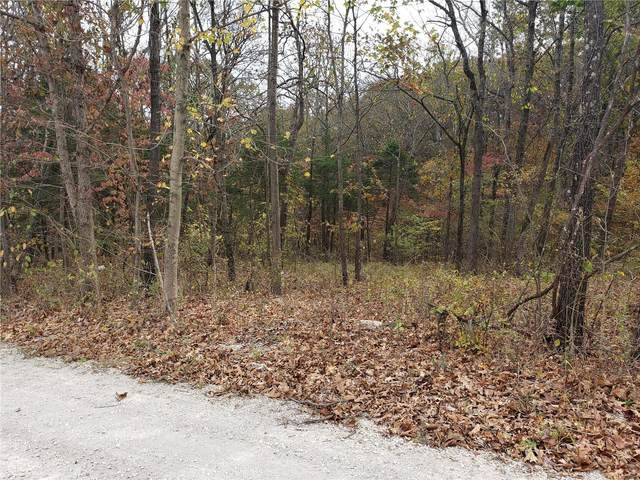 1617 Fox Lot 24, Festus, MO 63028 (#21001814) :: RE/MAX Vision