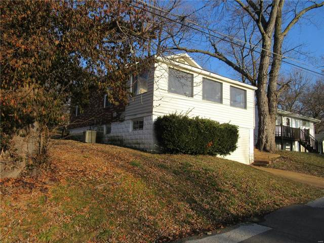 806 Marvin Avenue, St Louis, MO 63135 (#21001889) :: Realty Executives, Fort Leonard Wood LLC