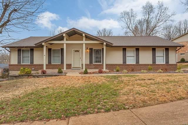 5855 Chrisbrook Drive, St Louis, MO 63128 (#21001978) :: Century 21 Advantage
