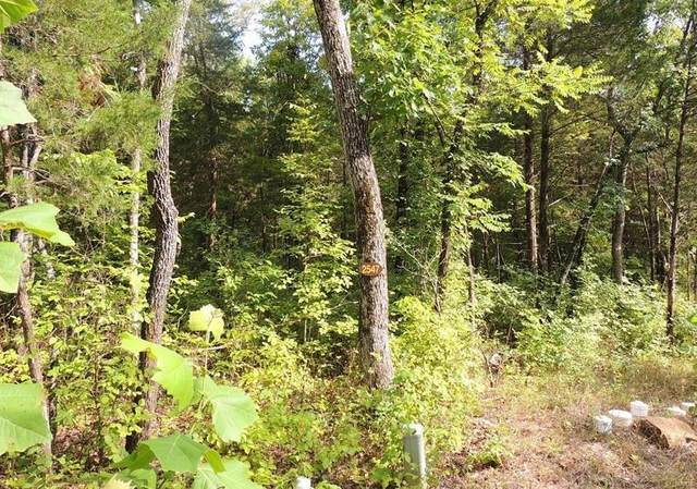 2547 Alpine Woods Drive, Innsbrook, MO 63390 (#21002014) :: Parson Realty Group