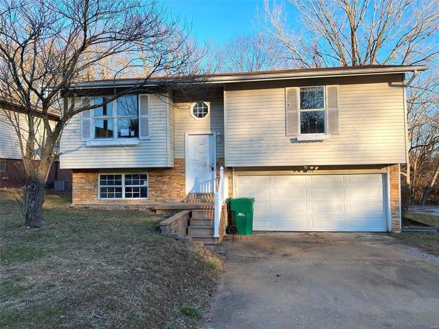 5310 Chippendale Lane, Imperial, MO 63052 (#21002104) :: Parson Realty Group