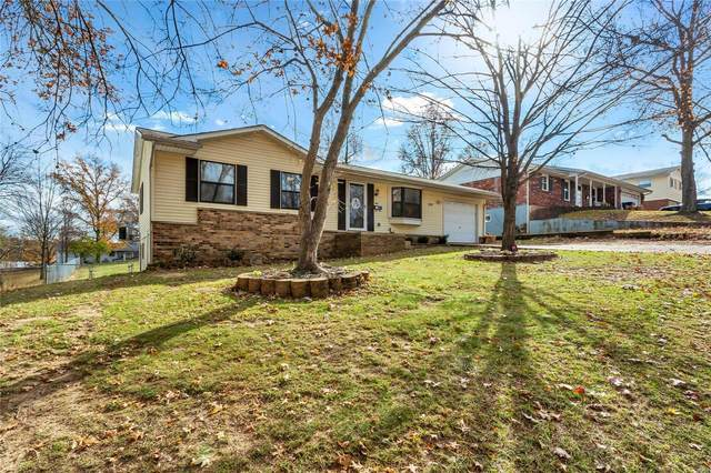 1237 Alexander Drive, Festus, MO 63028 (#21002268) :: Clarity Street Realty
