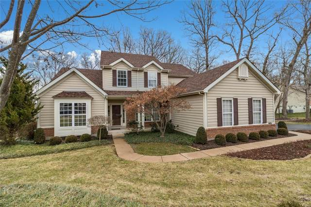 17437 Radcliffe Place Drive, Wildwood, MO 63025 (#21002469) :: Kelly Hager Group | TdD Premier Real Estate
