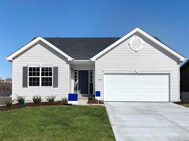 1190 Winding Bluffs Way, Fenton, MO 63026 (#21002559) :: PalmerHouse Properties LLC