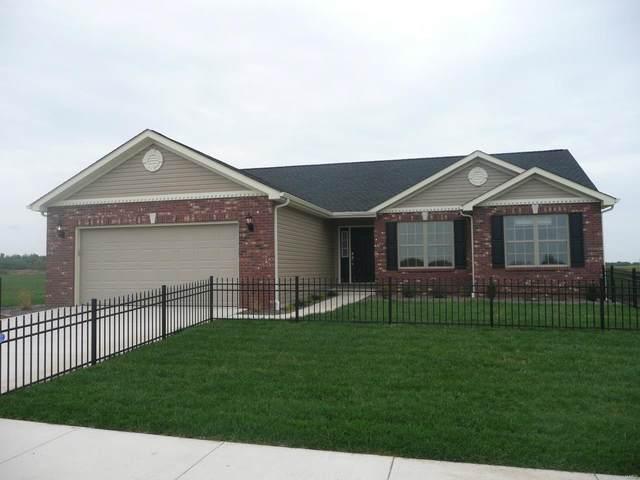480 Hayden Drive, Waterloo, IL 62298 (MLS #21002685) :: Century 21 Prestige
