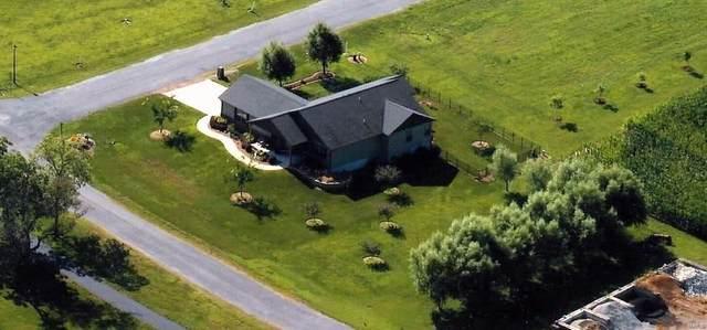 424 Duffy Drive, Marine, IL 62061 (#21002774) :: Realty Executives, Fort Leonard Wood LLC