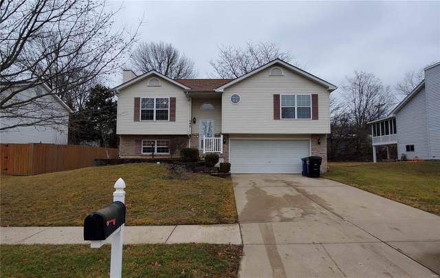 540 Briar Meadows Ct, Wentzville, MO 63385 (#21002960) :: Walker Real Estate Team