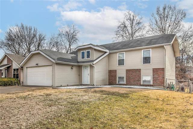 2390 Indiancup Drive, Florissant, MO 63033 (#21003079) :: Parson Realty Group