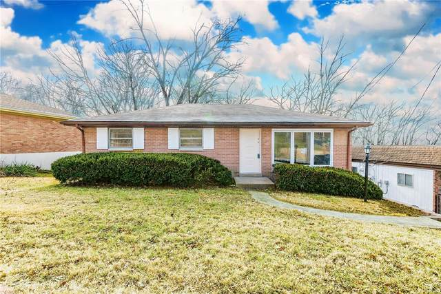 9636 Old Lincoln Trail, Fairview Heights, IL 62208 (#21003124) :: Realty Executives, Fort Leonard Wood LLC
