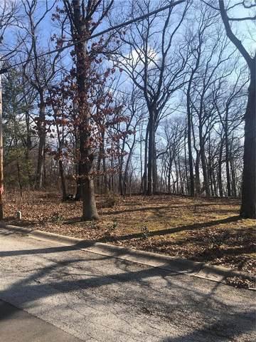 0 Woods Hill Dr., Saint Charles, MO 63303 (#21003216) :: Jeremy Schneider Real Estate