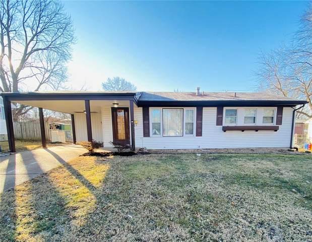 9714 Harold, St Louis, MO 63134 (#21003567) :: PalmerHouse Properties LLC