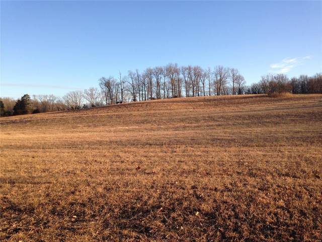 0 County Rd 6470, Salem, MO 65560 (#21004075) :: Parson Realty Group