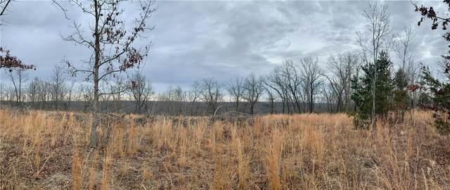 0 (Lot 12)Hillview Lane, Dixon, MO 65459 (#21004163) :: Jeremy Schneider Real Estate