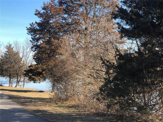 173 Lot Section 5, De Soto, MO 63020 (#21004249) :: Matt Smith Real Estate Group