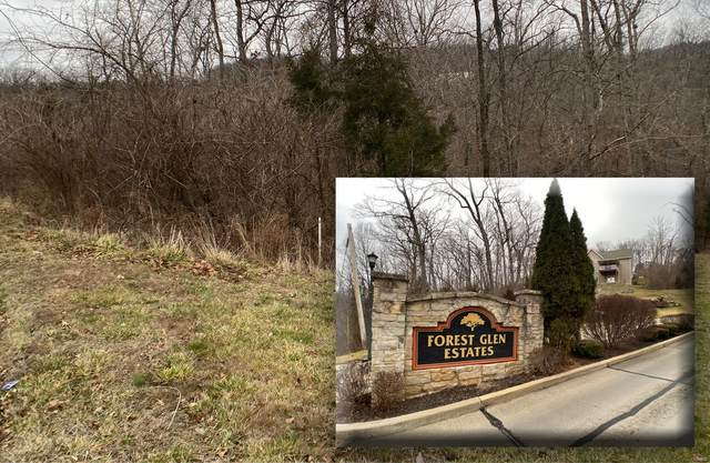 2609 Forest Glen Dr, Pacific, MO 63069 (#21004256) :: Matt Smith Real Estate Group