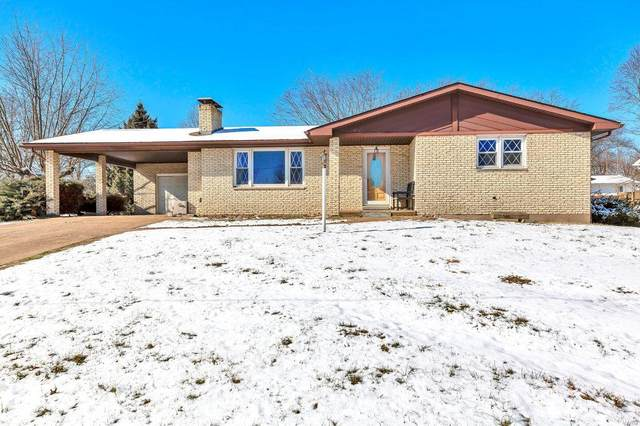 711 S Library Street, Waterloo, IL 62298 (#21004577) :: Fusion Realty, LLC