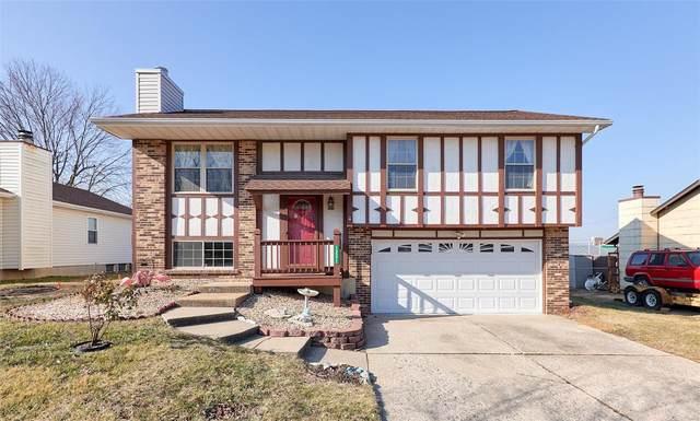 12271 Creve Coeur Ridge, Maryland Heights, MO 63043 (#21005178) :: Walker Real Estate Team