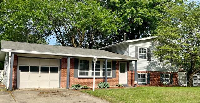 5 Village Drive, Swansea, IL 62226 (#21006341) :: Parson Realty Group