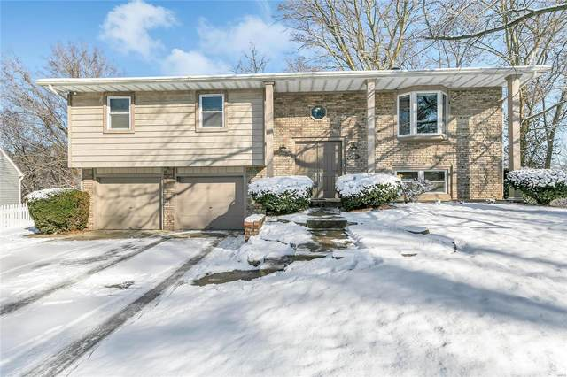 120 Kroener Drive, Collinsville, IL 62234 (#21006503) :: Fusion Realty, LLC