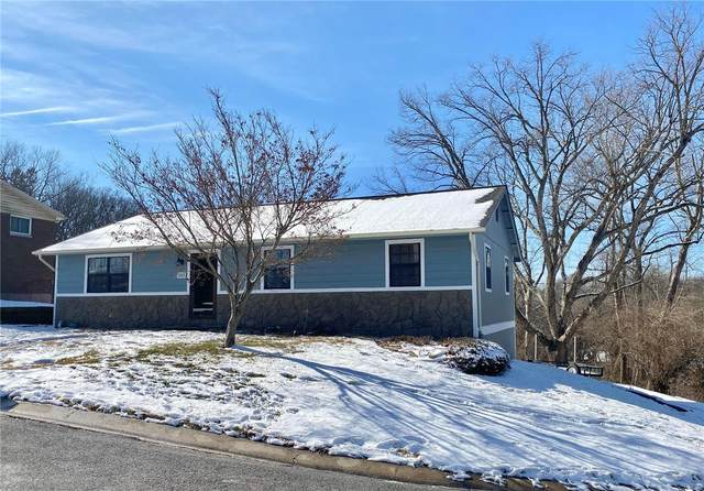 117 Kroener Drive, Collinsville, IL 62234 (#21006525) :: Fusion Realty, LLC