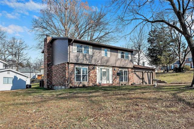 7739 Sunray Lane, St Louis, MO 63123 (#21006539) :: Parson Realty Group