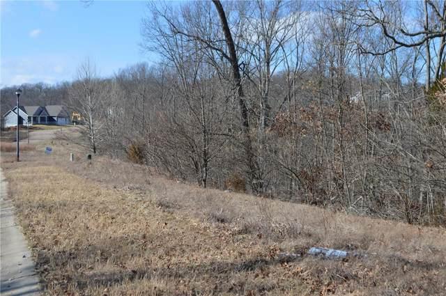 0 Valley View Drive, Barnhart, MO 63012 (MLS #21006967) :: Century 21 Prestige