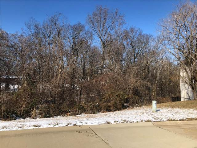 0 Sundrop Court, Godfrey, IL 62035 (#21007022) :: Tarrant & Harman Real Estate and Auction Co.